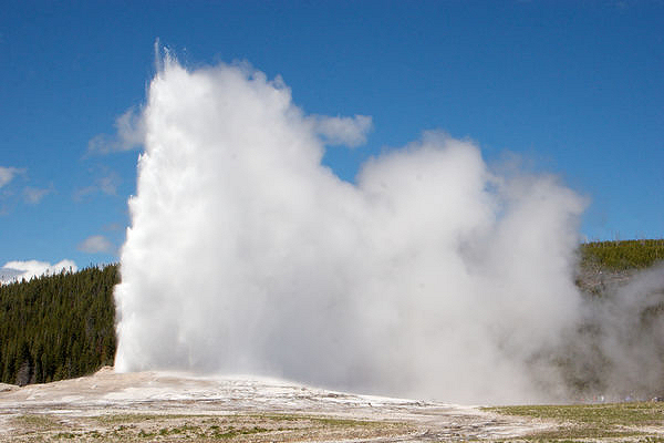 Old Faithful at full steam